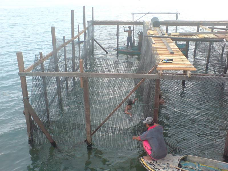 application of pipes knowledge to aquaculture