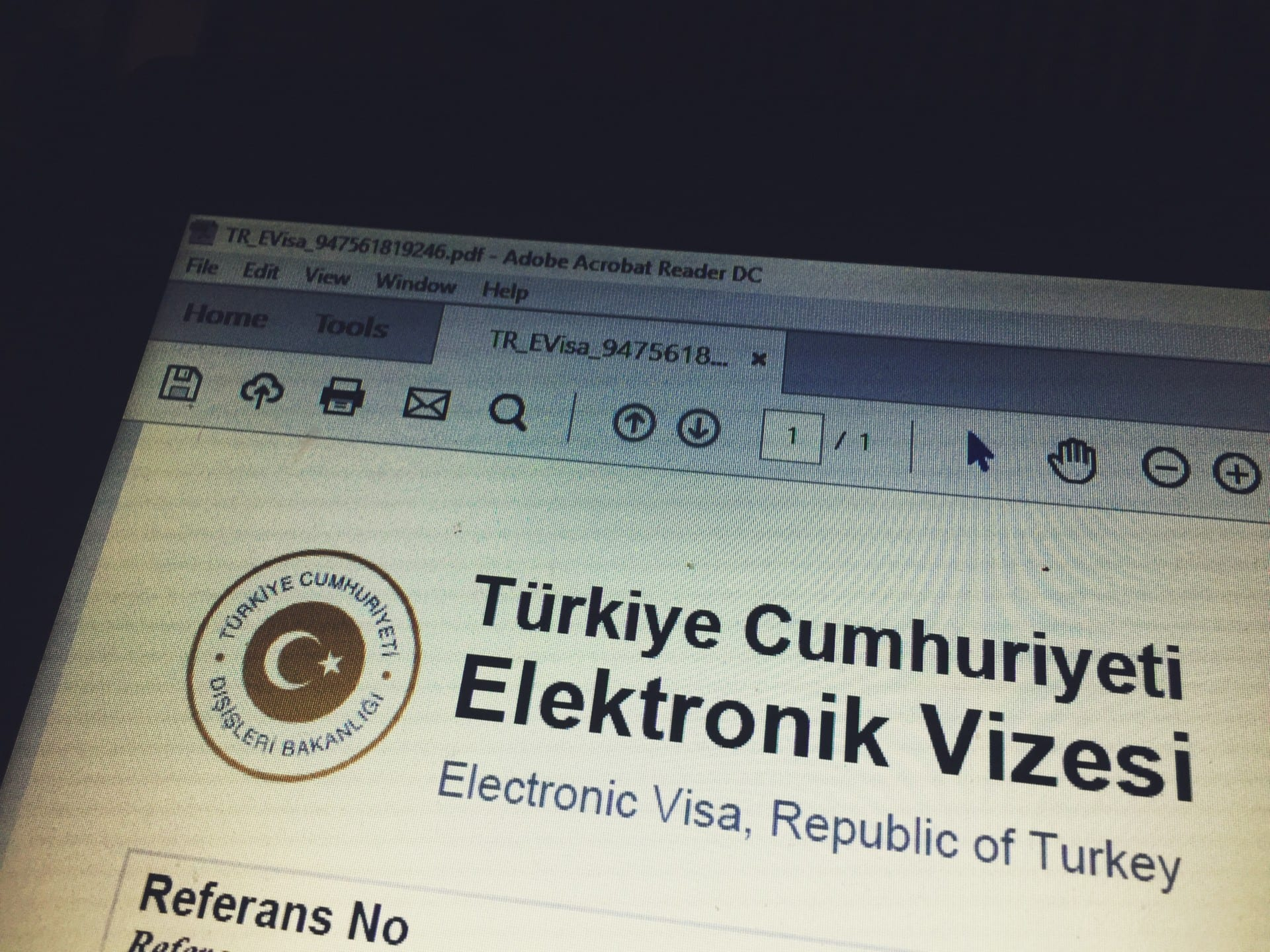 visa application to go to turkey