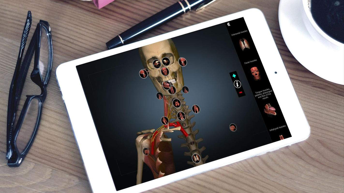 3d anatomy application for pc