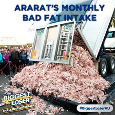 biggest loser australia 2013 application
