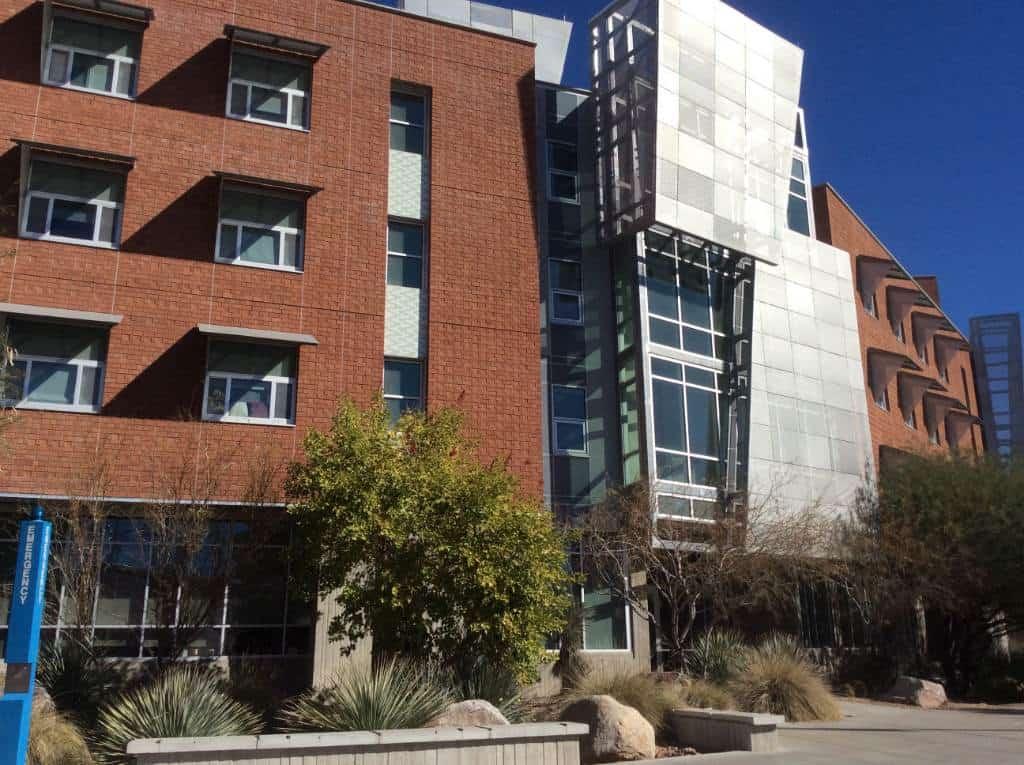 university of arizona application graduate