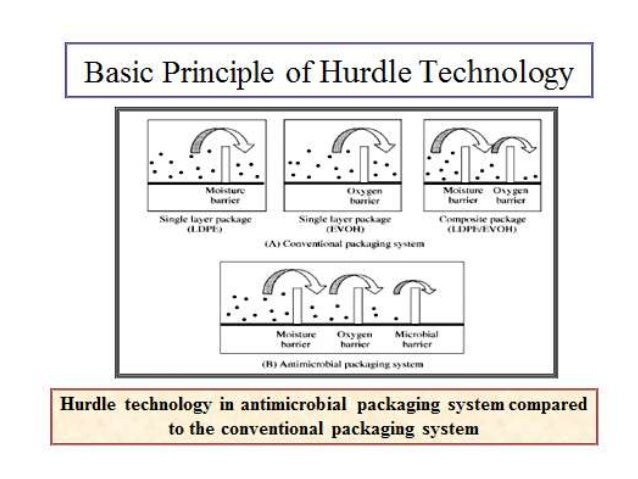 application of hurdle technology in food preservation
