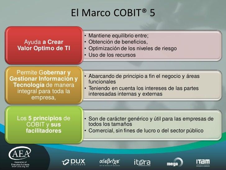 cobit 4.1 application controls