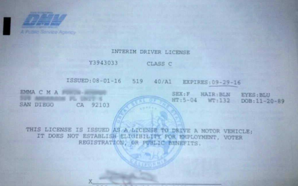 international driving permit usa application form