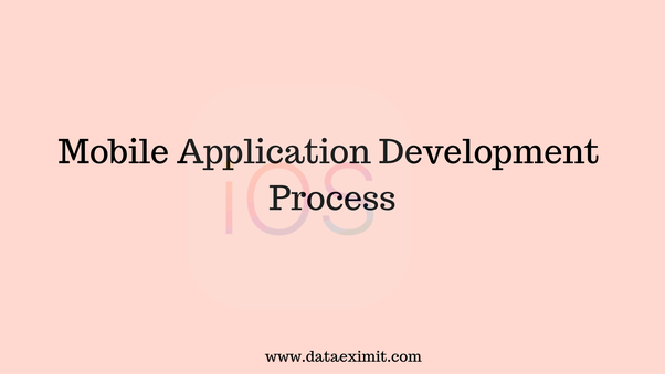 how long does an ses application take